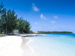 Beach in the Abacos, Bahamas